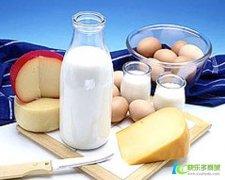 乳清蛋白好吗