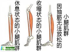 <b>夜里小腿抽筋是缺钙了还是着凉了</b>