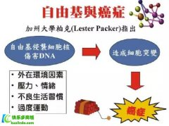 <b>BioAstin虾青素癌症的人吃了有用吗?</b>