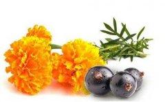 <b>什么时候吃叶黄素最好?是 早晨还是晚上吃?</b>