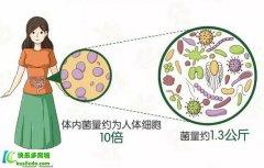 安利纽崔莱女士益生菌和纽崔莱儿童益生菌固体饮料