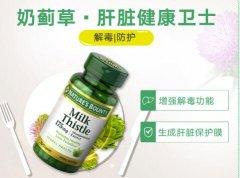 自然之宝奶蓟提取物的功效 自然之宝奶蓟草服用方法